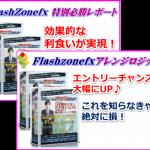 Flash Zone FX(フラッシュゾーンFX)必勝レポートのご案内